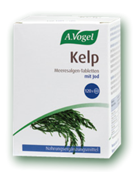 Picture of A. VOGEL Kelp 120 tabs