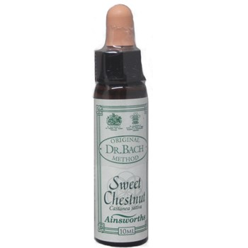 Picture of AINSWORTHS Sweet Chestnut 10ml