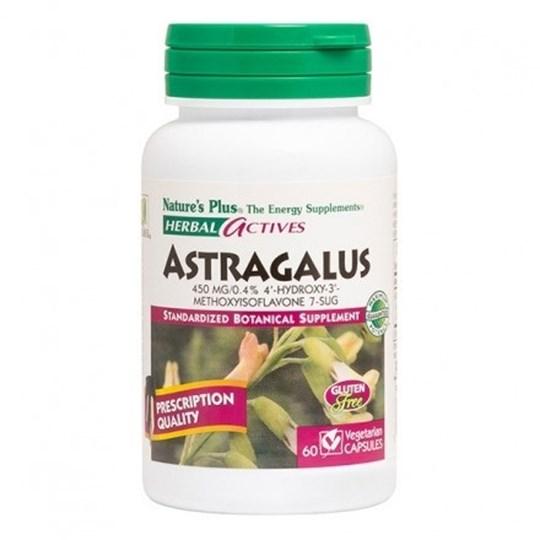 Picture of Natures Plus ASTRAGALUS  (Astragalus membranaceus) 450 mg 60caps